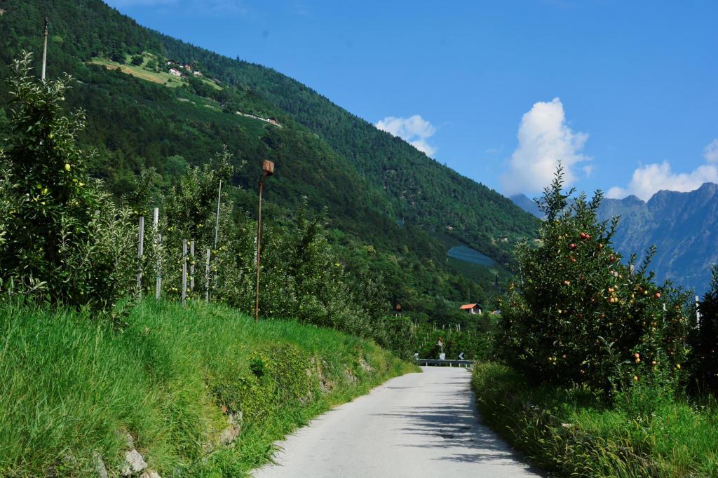 Wanderweg Südtirol